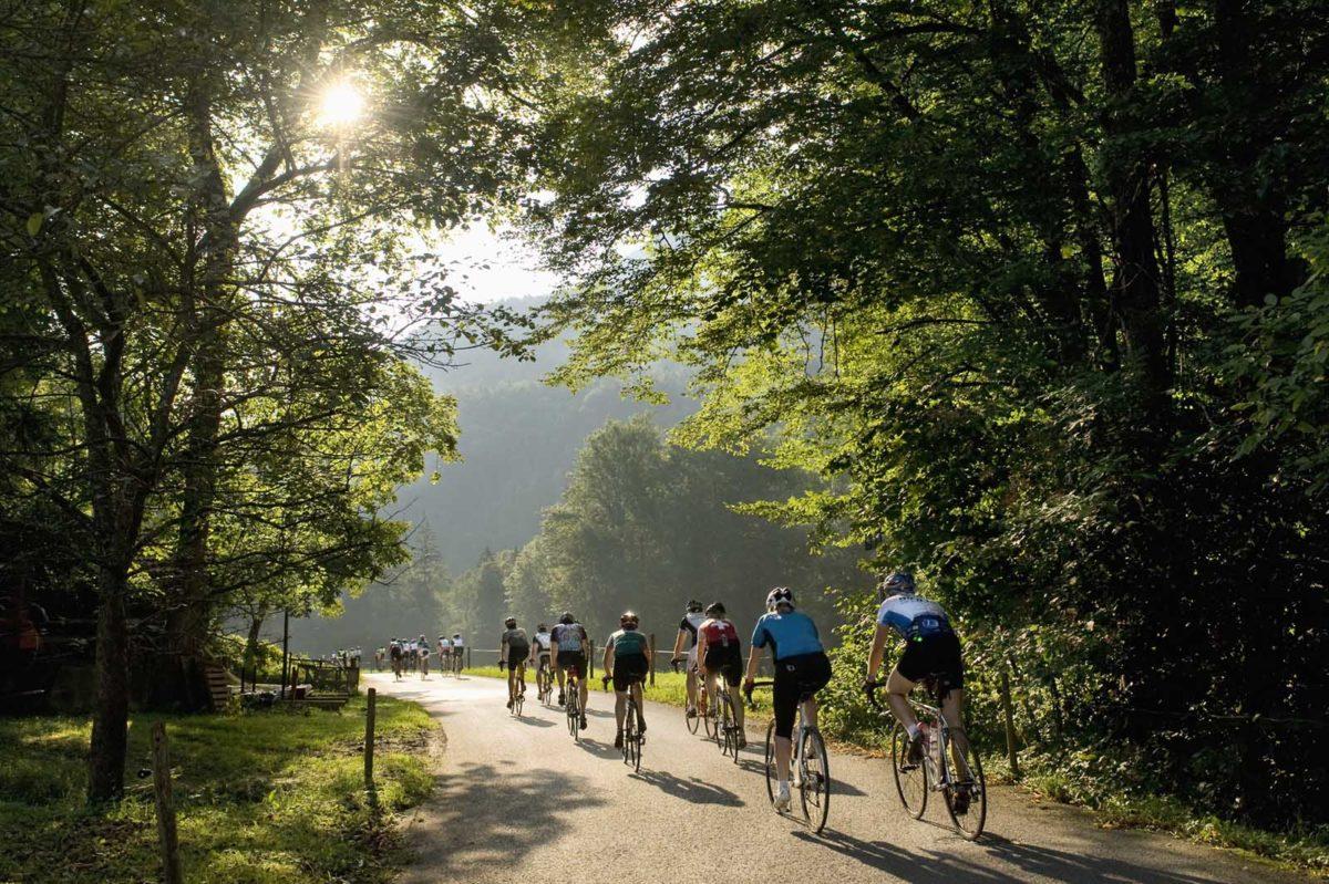 Sportfotografie-München-Rennrad-Roadbike-Gruppe-von-hinten-morgen-Laubwalds