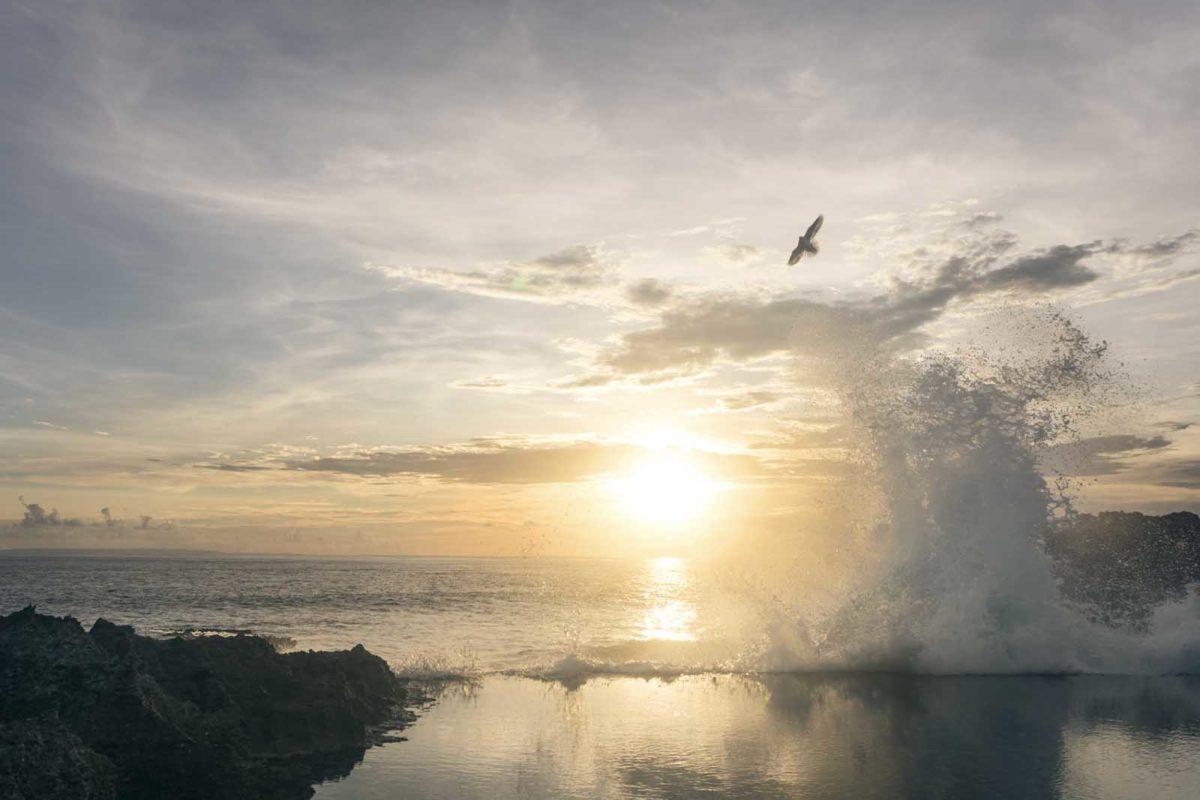 Werbefotografie-Lifestyle-Möwe-Wasserfontäne-Fels-Sonnenuntergang-Meer