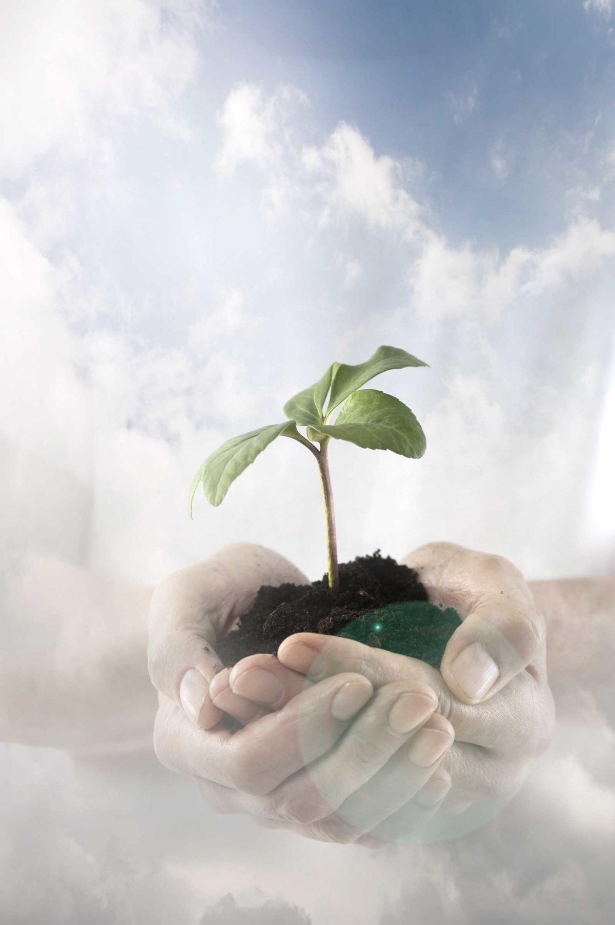 Werbefotografie-Lifestyle-Nachhaltigkeit-Umwelt-Hände-Pflanze-Himme-Wolken